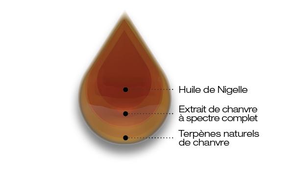 huile de nigelle et CBD