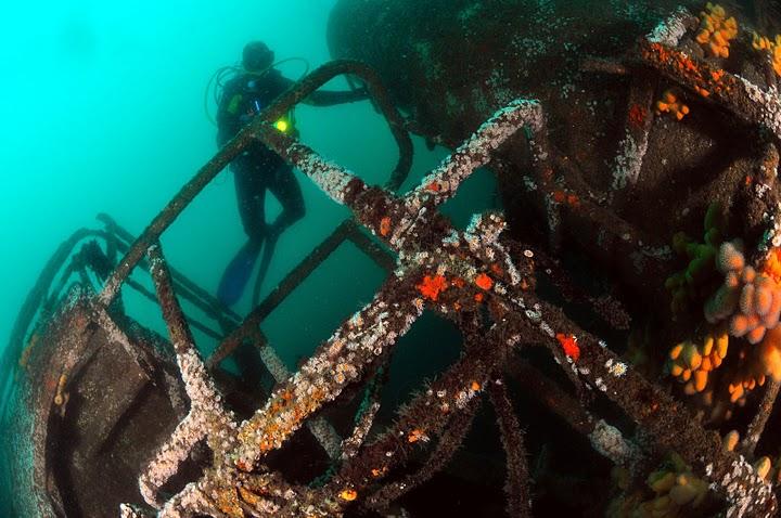 Bienvenue sur le site des Épaves et de l'Archéologie subaquatique