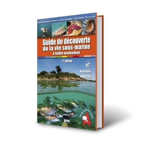 Guide découverte de la vie sous-marine à faible profondeur – 2e édition