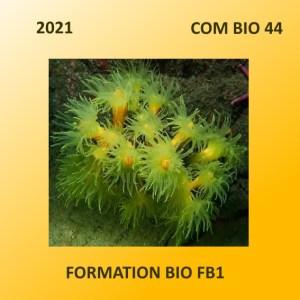Formations Bio 2021 en 44