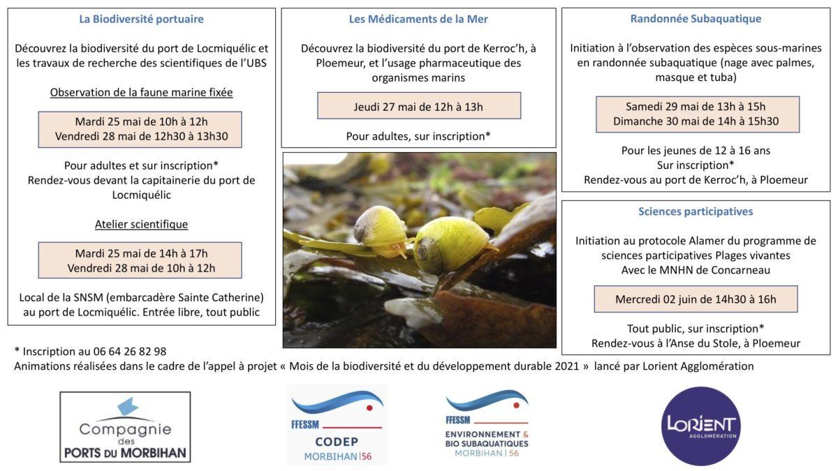 Le Codep 56 organise une animation sur la biodiversité