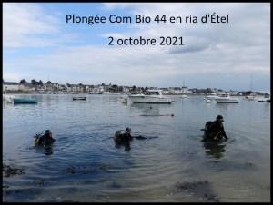 Plongée bio avec la Com Bio 44