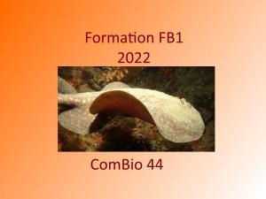 Formation FB1