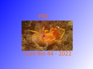 Formation Bio niveau 2 en Loire-Atlantique