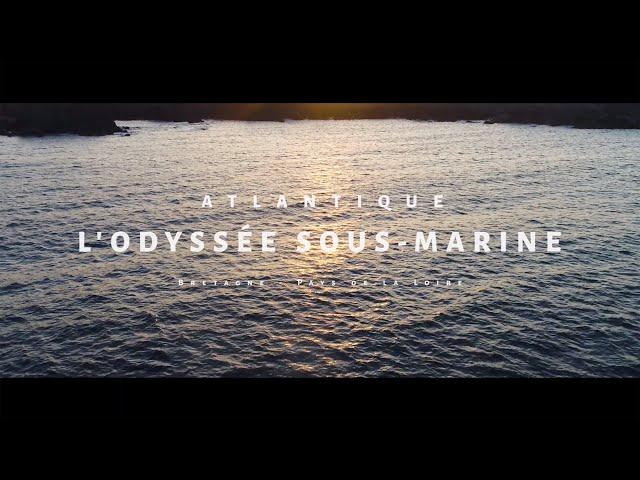 moi-je-plonge-a-louest-lodyssee-atlantique