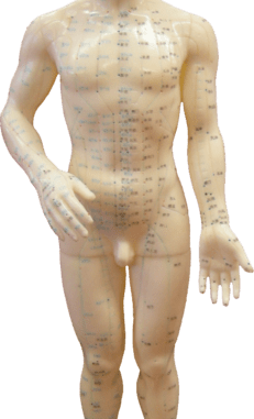 La medicina natural y su evidencia científica