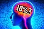 ¿En realidad usamos sólo el 10% del cerebro?