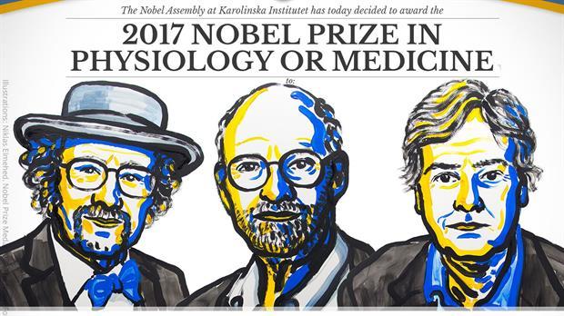 Prêmio Nobel de Fisiologia e Medicina 2017: Laureados, publicações e curiosidades!