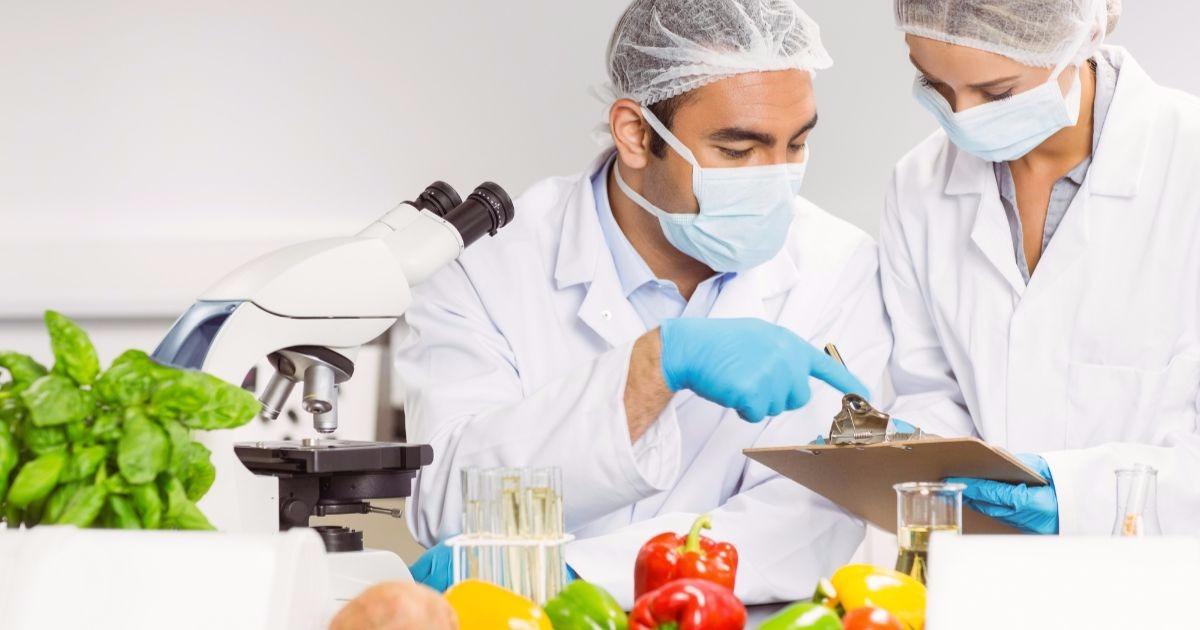 O que é contaminação alimentar?