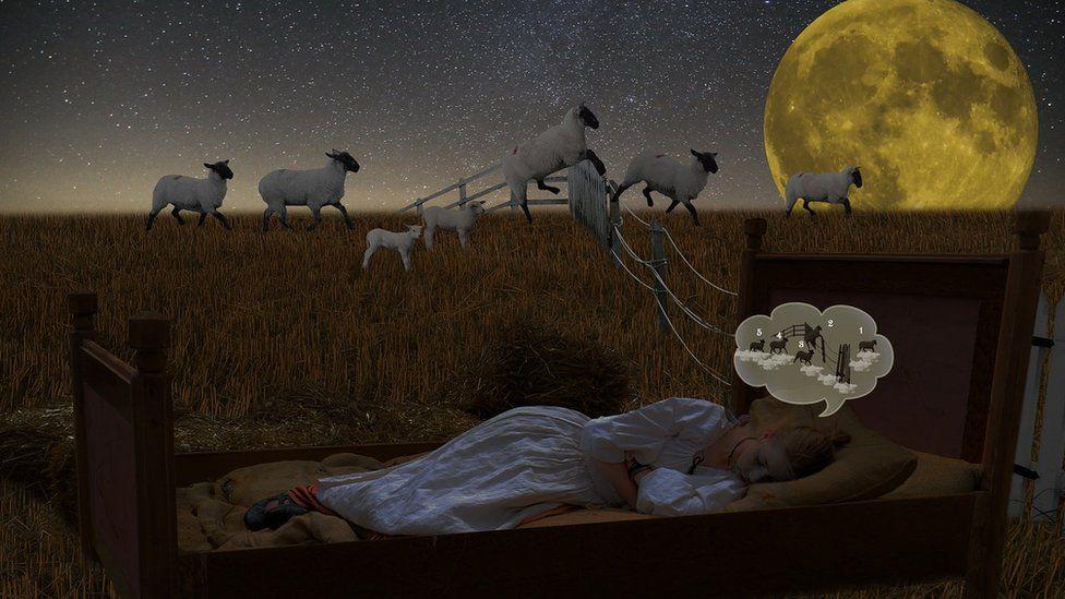 Entre pesadelos e calmaria: como funcionam os sonhos?