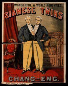 cartel de los hermanos siameses