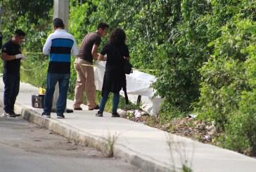 Media docena de feminicidios se investigan en Cancún
