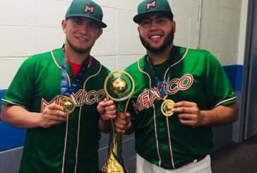 Dos peloteros de Tigres a la selección nacional de béisbol