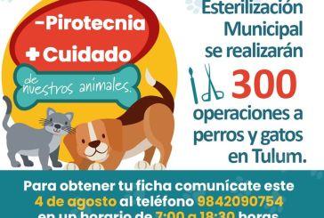 Ahorro en pirotecnía de fiestas patrias a esterilización de mascotas en Tulum