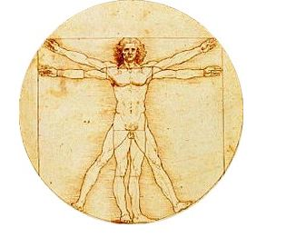 Image result for human body on a wheel