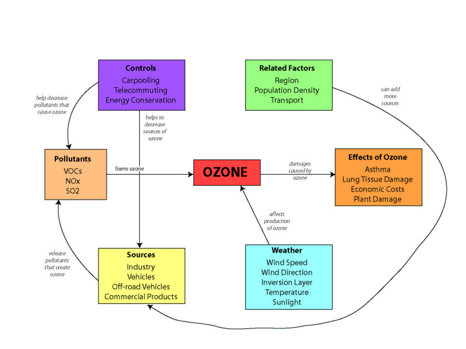 Concept Map Sample Response