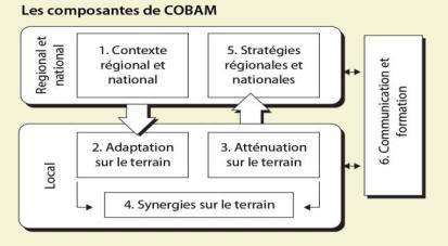 cobam-component-f