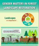 Gender matters in forest landscape restoration