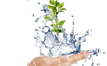 Dünya Su Günü Vesilesiyle: Su Gibi Aziz Olun!