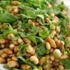 hayvansal olmayan yoğun proteinli besinler çiftçiden eve