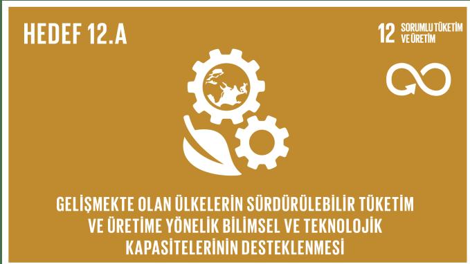 Gelişmekte olan ülkelerin sürdürülebilir tüketim ve üretime yönelik bilimsel ve teknolojik kapasitelerinin desteklenmesi