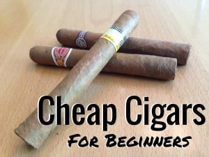 Cheap Cigars for Beginners