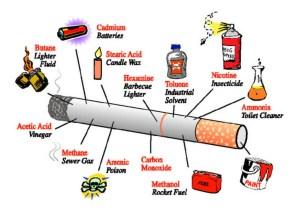 Parts includes in a Cigarette