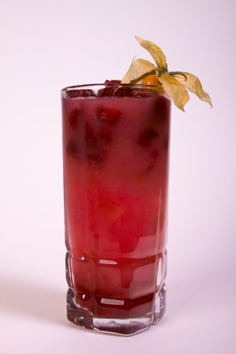 Raspberry seabreeze