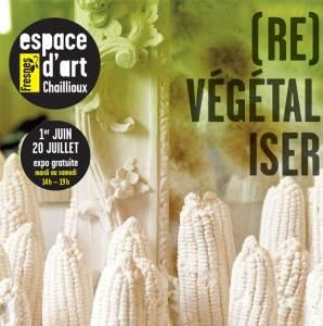 Re vegetaliser fresnes 2 - (Re)Végétaliser
