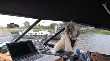 Molly in the wheelhouse