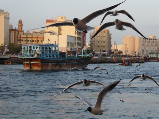 The Birds, Deira Creek