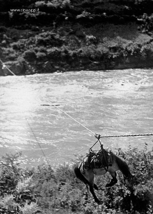 A rope bridge