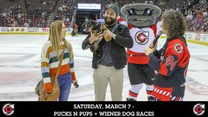 Cincinnati Cyclones | Pucks N Pups + Wiener Dog Races @ Heritage Bank Center | Cincinnati | Ohio | United States