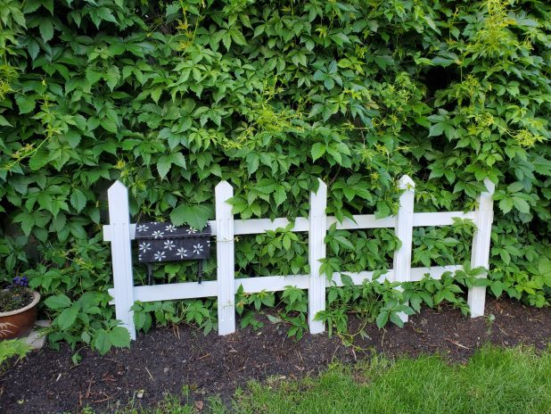 DIY Picket Fence
