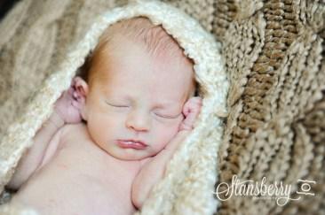 gibson newborn-0480