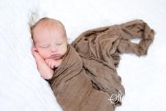 jude newborn-6820