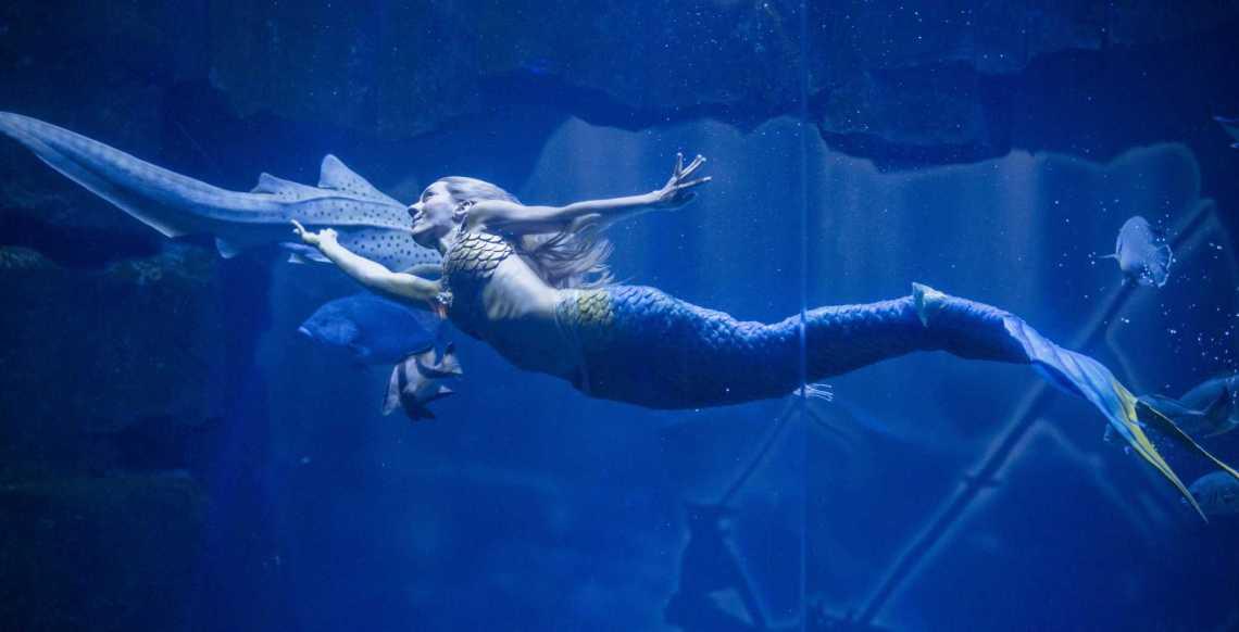 Spectacle Claire la sirène - Aquarium de Paris