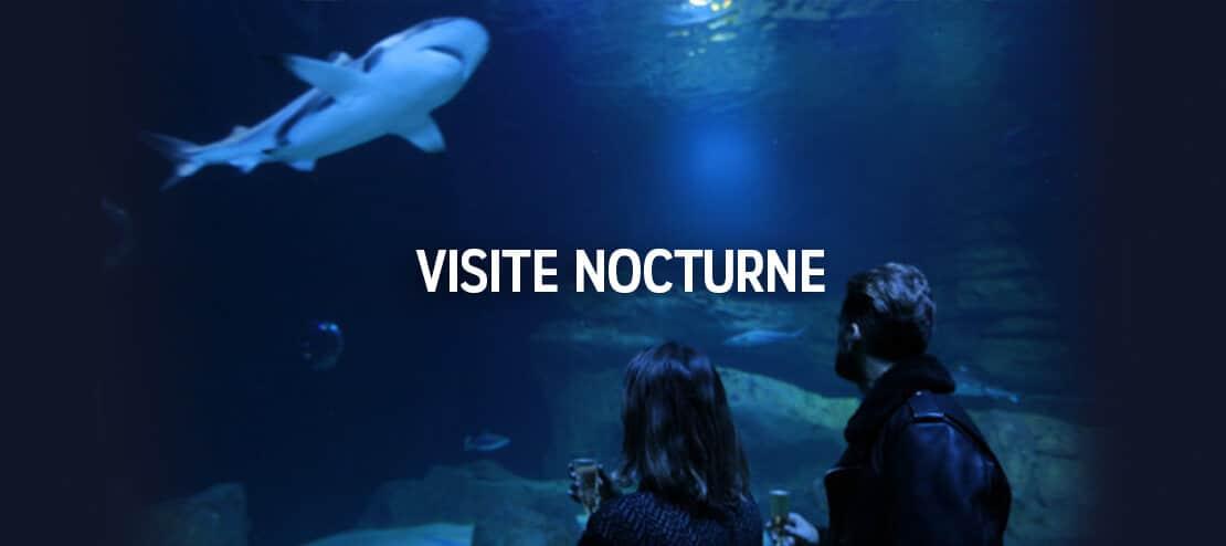 Visite nocturne - Aquarium de Paris