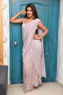 Nidhhi Agerwal (118)