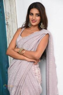 Nidhhi Agerwal (119)