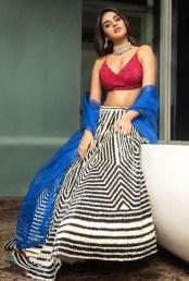 Nidhhi Agerwal (45)