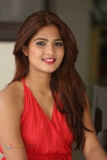 Sravani Nikki (18)