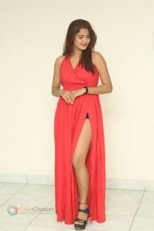 Sravani Nikki (19)
