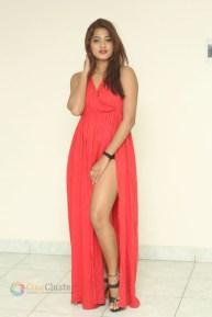 Sravani Nikki (7)
