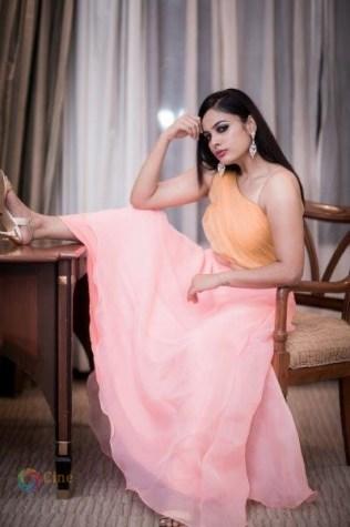 Nandita Swetha New Stills (1)