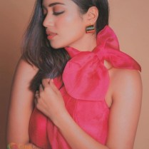 Nivetha Pethuraj (11)