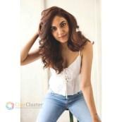 Ritu Varma (36)