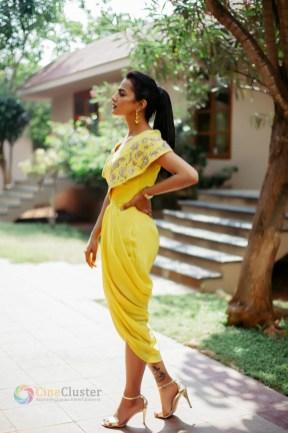 Shraddha Srinath (14)