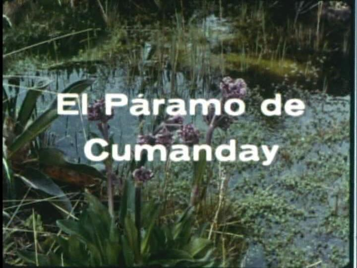 El páramo de Cumanday