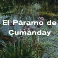 El páramo de Cumanday